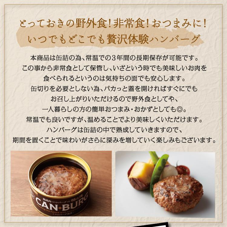 とっておきの野外食!非常食!おつまみに!いつでもどこでも贅沢体験ハンバーグ