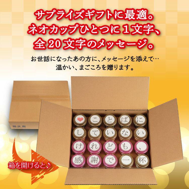 「菊正宗 思いを伝える ネオカップセット A」サプライズギフトに最適。ネオカップひとつに1文字、全20文字のメッセージ。