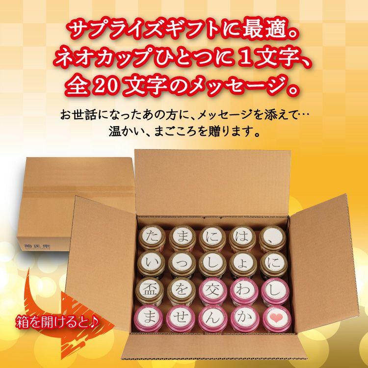 「菊正宗 思いを伝える ネオカップセット C」サプライズギフトに最適。ネオカップひとつに1文字、全20文字のメッセージ。